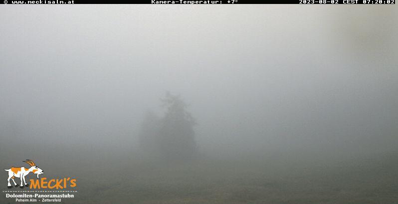 Webcam Zettersfeld Faschingalm - Livebild und Wetter